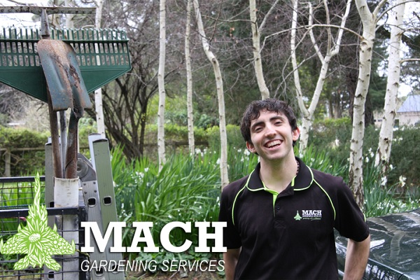 Landscaping Mount Eliza Gardener Maintenance