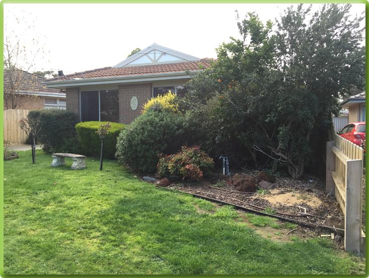 After Garden Design Mount Eliza Gardening