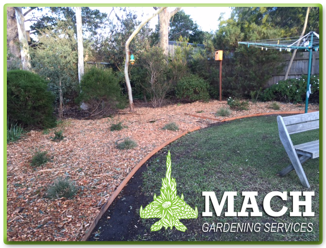 Garden transforming mount eliza maintenance