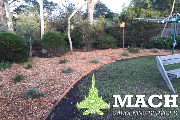 Mulching and Planting