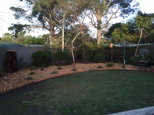 Garden transforming mount eliza maintenance