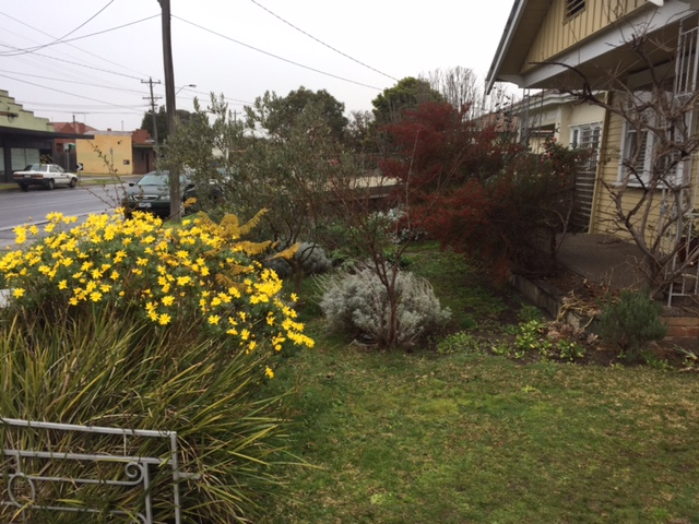 Landscaping Mount Eliza Gardening Maintenance Design