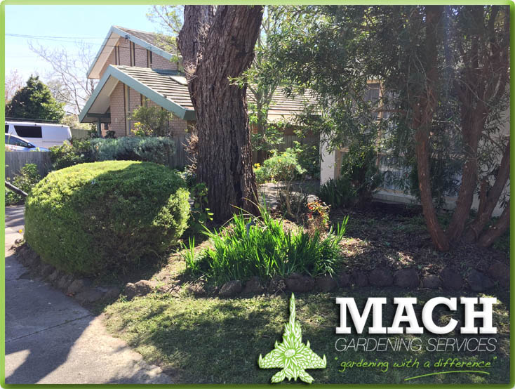 Garden Maintenance Mount Eliza
