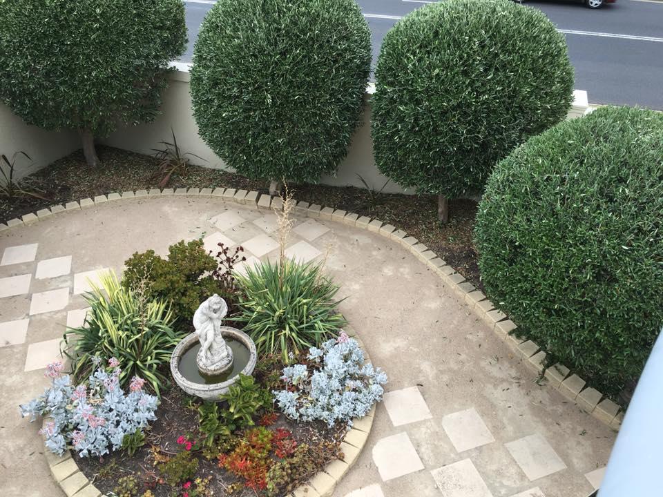 Pruning Gardening Mach Mount Eliza