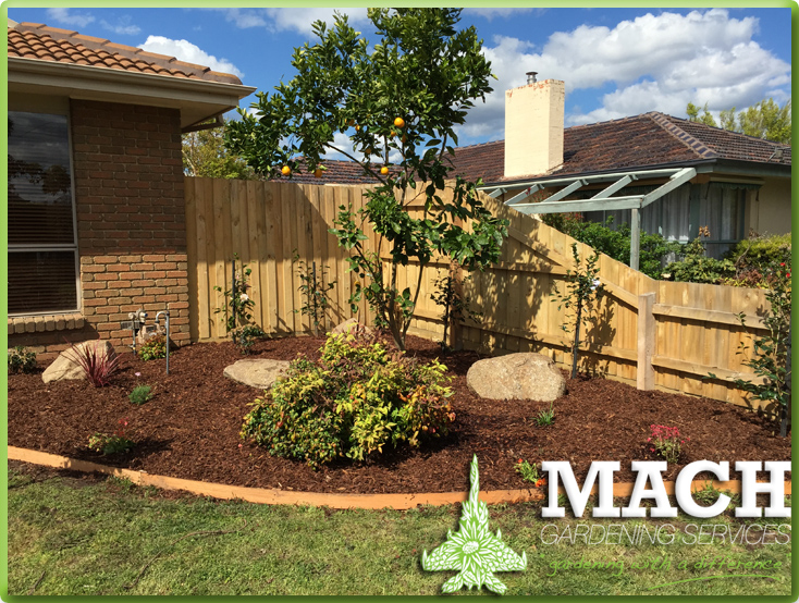 After Garden Design Mount Eliza Gardening