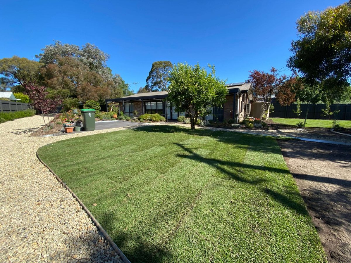 turf and new lawn mount eliza